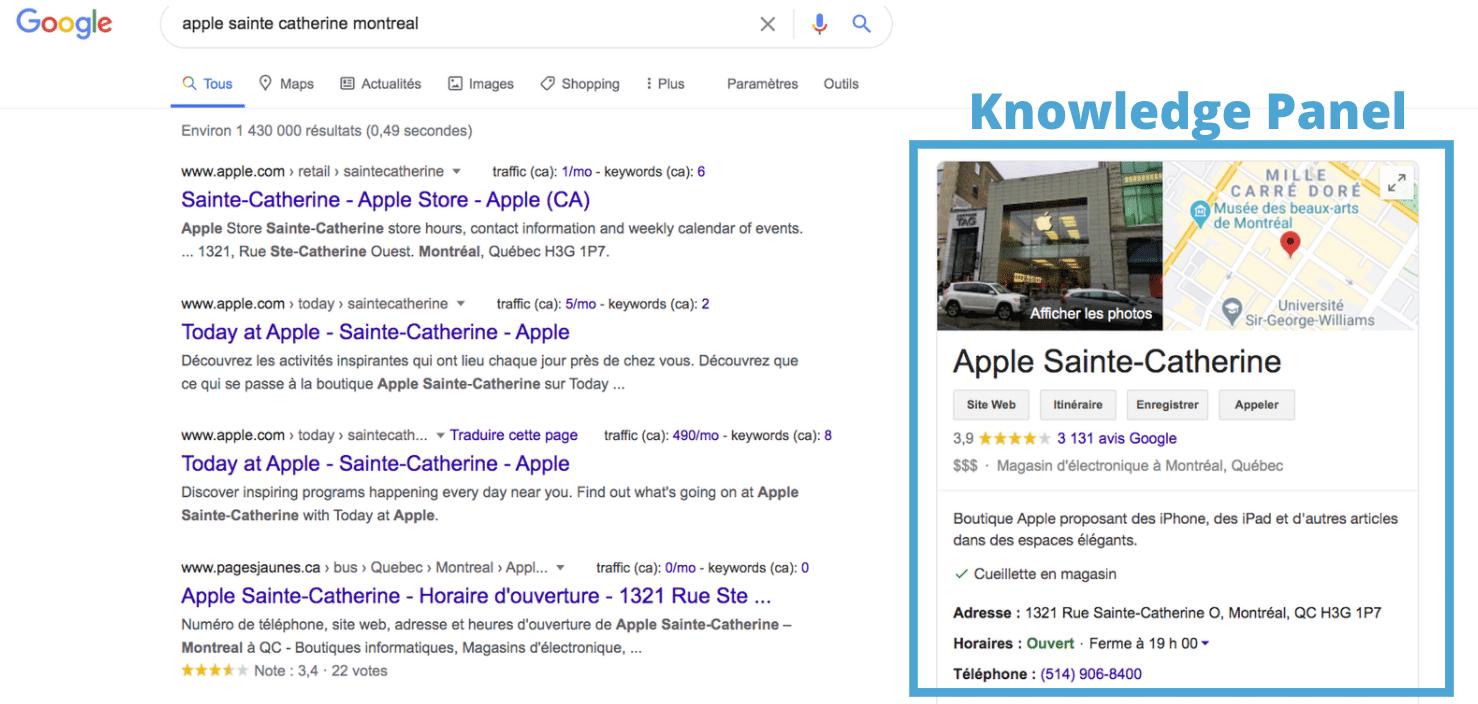 Knowledge Panel Local Google
