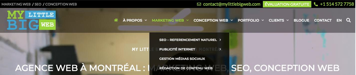 exemple menu et sous-menu maillage interne