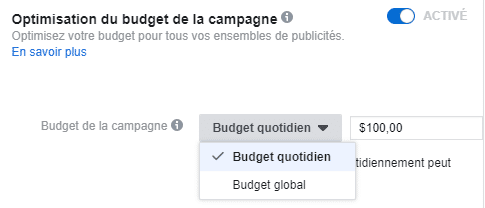 budget quotidien et global facebook ads