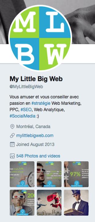 exemple-bio-twitter-mlbw