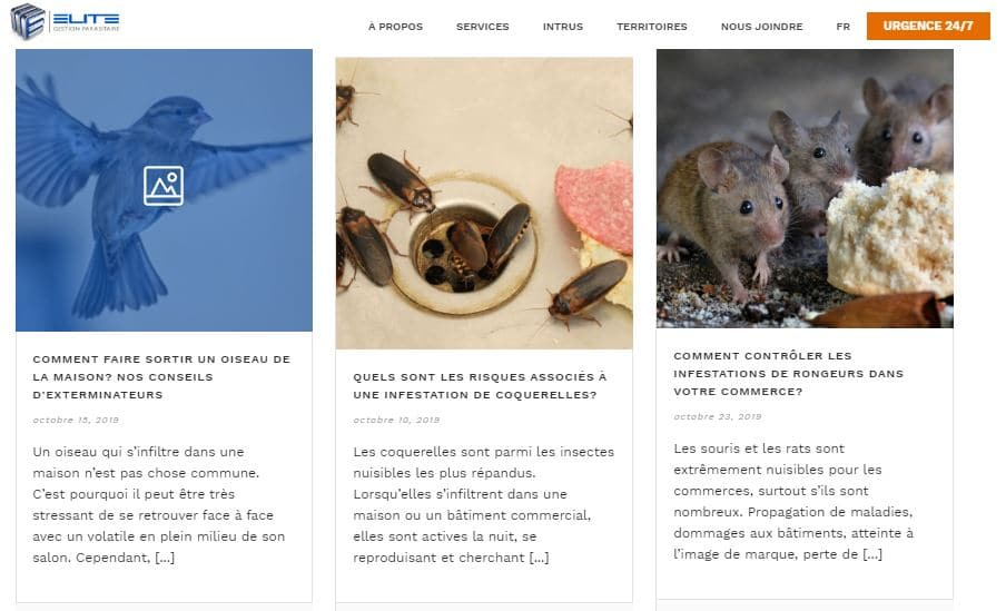 exemple-articles-blogue