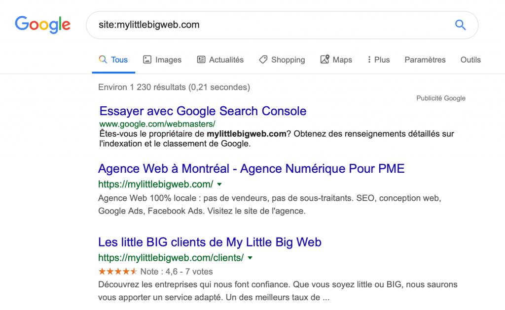 Exemple-pages-indexées-sur-Google2
