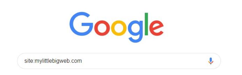 Exemple-pages-indexées-sur-Google1