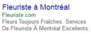 annonce-google-ads