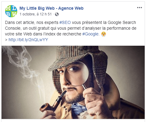 Partage-article-facebook-my-little-big-web